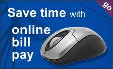 save time with online bill pay